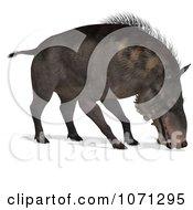 Clipart 3d Prehistoric Entelodon Dinosaur Sniffing 1 Royalty Free CGI Illustration
