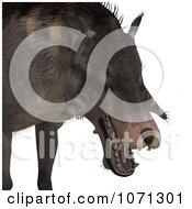 3d Prehistoric Entelodon Dinosaur 5