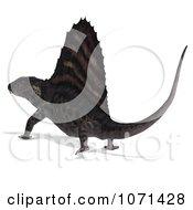 Clipart 3d Prehistoric Dimetrodon Dinosaur Lizard Walking Away 2 Royalty Free CGI Illustration