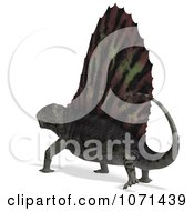 Clipart 3d Prehistoric Dimetrodon Dinosaur Lizard 8 Royalty Free CGI Illustration