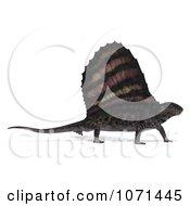 Clipart 3d Prehistoric Dimetrodon Dinosaur Lizard 1 Royalty Free CGI Illustration