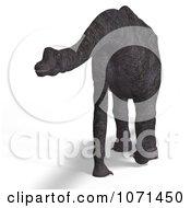 Clipart 3d Prehistoric Brachiosaurus Dinosaur 21 Royalty Free CGI Illustration
