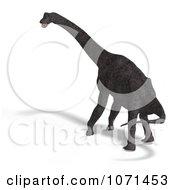 Clipart 3d Prehistoric Brachiosaurus Dinosaur 24 Royalty Free CGI Illustration