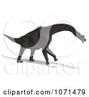 Clipart 3d Prehistoric Brachiosaurus Dinosaur 15 Royalty Free CGI Illustration by Ralf61