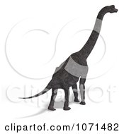 Clipart 3d Prehistoric Brachiosaurus Dinosaur 18 Royalty Free CGI Illustration by Ralf61
