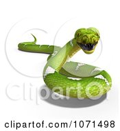 Clipart 3d Green Python Snake 1 Royalty Free CGI Illustration