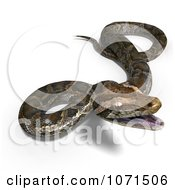 Clipart 3d Brown Python Snake 2 Royalty Free CGI Illustration
