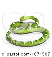 3d Green Python Snake 3