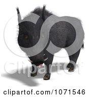 Clipart 3d Wild Black Boar Pig 4 Royalty Free CGI Illustration
