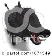 Clipart 3d Wild Black Boar Pig 6 Royalty Free CGI Illustration