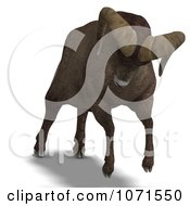 Clipart 3d Charging Ovis Aries Sheep Ram With Curled Horns 4 Royalty Free CGI Illustration