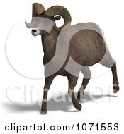 Clipart 3d Running Ovis Aries Sheep Ram With Curled Horns 2 Royalty Free CGI Illustration