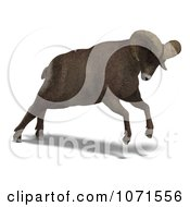 Clipart 3d Charging Ovis Aries Sheep Ram With Curled Horns 1 Royalty Free CGI Illustration