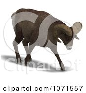 Clipart 3d Charging Ovis Aries Sheep Ram With Curled Horns 2 Royalty Free CGI Illustration