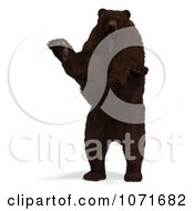 Clipart 3d Ursus Arctos Brown Bear Standing On Its Hind Legs Royalty Free CGI Illustration