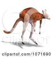 Clipart 3d Australian Kangaroo Hopping 1 Royalty Free CGI Illustration