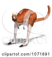 Clipart 3d Australian Kangaroo Hopping 2 Royalty Free CGI Illustration