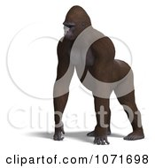 Clipart 3d Gorilla Walking Royalty Free CGI Illustration