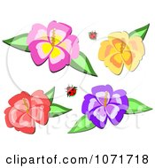 Clipart Ladybugs And Hibiscus Flowers Royalty Free Vector Illustration by bpearth
