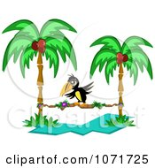 Clipart Toucan Walking On A Stick Between Two Coconut Palm Trees Royalty Free Vector Illustration by bpearth