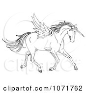 Clipart Black And White Sketched Fantasy Winged Unicorn Horse Royalty Free Illustration by LoopyLand #COLLC1071762-0091