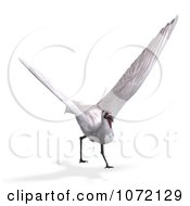 Clipart 3d White Crane Bird Flying 2 Royalty Free CGI Illustration by Ralf61