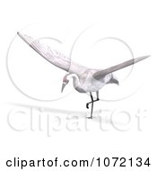 Clipart 3d White Crane Bird Ready To Take Off Royalty Free CGI Illustration by Ralf61