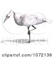 Clipart 3d White Crane Bird 2 Royalty Free CGI Illustration by Ralf61