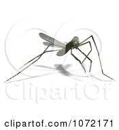 Clipart 3d Praying Mantis Bug 11 Royalty Free CGI Illustration