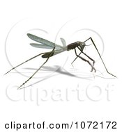 Clipart 3d Praying Mantis Bug 12 Royalty Free CGI Illustration