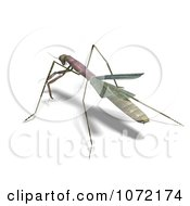 Clipart 3d Praying Mantis Bug 9 Royalty Free CGI Illustration