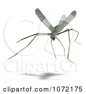 Clipart 3d Praying Mantis Bug 6 Royalty Free CGI Illustration