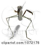 Clipart 3d Praying Mantis Bug 7 Royalty Free CGI Illustration