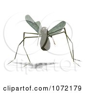 Clipart 3d Praying Mantis Bug 3 Royalty Free CGI Illustration
