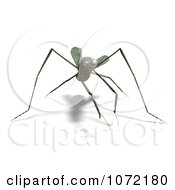 Clipart 3d Praying Mantis Bug 4 Royalty Free CGI Illustration