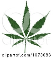 Clipart Medical Marijuana Pot Leaf Royalty Free Vector Illustration by dero