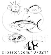 Clipart Black And White Unicorn Tang Moorish Idol And Puffer Ahi Tuna Hawaiian Trigger Fish Royalty Free Vector Illustration by erikalchan