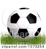 Clipart 3d Soccer Ball On Grass 1 Royalty Free CGI Illustration
