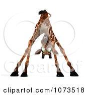 Clipart 3d Scared African Giraffe 5 Royalty Free CGI Illustration