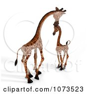 Clipart 3d Parent And Baby Giraffe 1 Royalty Free CGI Illustration