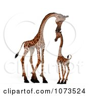 Clipart 3d Parent And Baby Giraffe 2 Royalty Free CGI Illustration