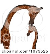 Clipart 3d Parent And Baby Giraffe 3 Royalty Free CGI Illustration