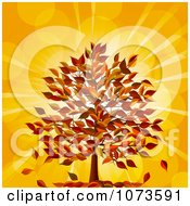 Clipart Fall Tree With Autumn Foliage Against Orange Flares Royalty Free Vector Illustration