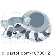 Clipart Cute Raccoon Sleeping In A Curled Up Position Royalty Free Vector Illustration by Pushkin