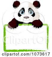 Clipart Cute Panda Looking Over A Green Sign Royalty Free Vector Illustration