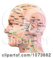 Clipart 3d Male Acupressure Chart Head 2 Royalty Free CGI Illustration