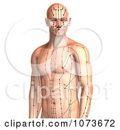 Clipart 3d Male Acupressure Acupuncture Upper Body Chart 2 Royalty Free CGI Illustration