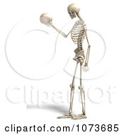 Clipart 3d Human Male Skeleton Gazing At A Skull Royalty Free CGI Illustration