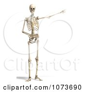 Clipart 3d Human Male Skeleton Pointing Royalty Free CGI Illustration