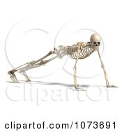 Clipart 3d Human Male Skeleton Doing Push Ups Royalty Free CGI Illustration